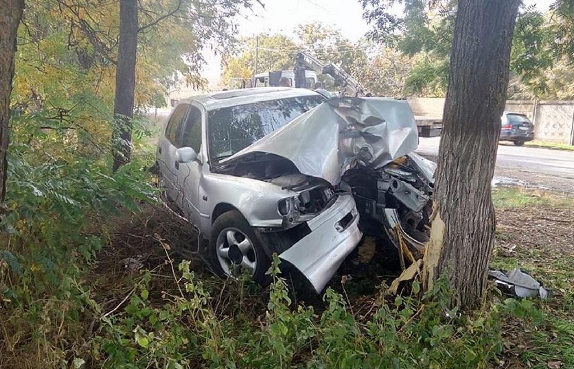 Четверо погибли в ДТП с деревом под Геленджиком