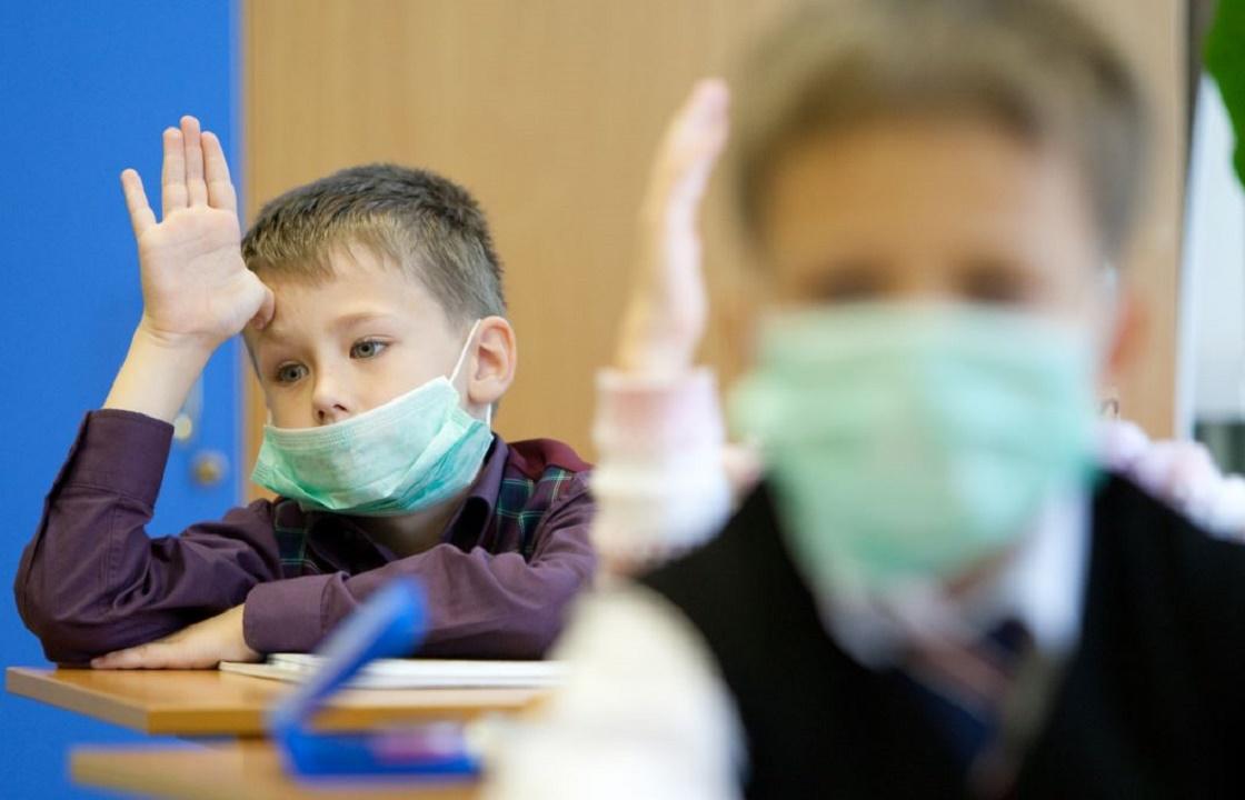 Министр: школьники Ставрополья могут продолжить надомное обучение