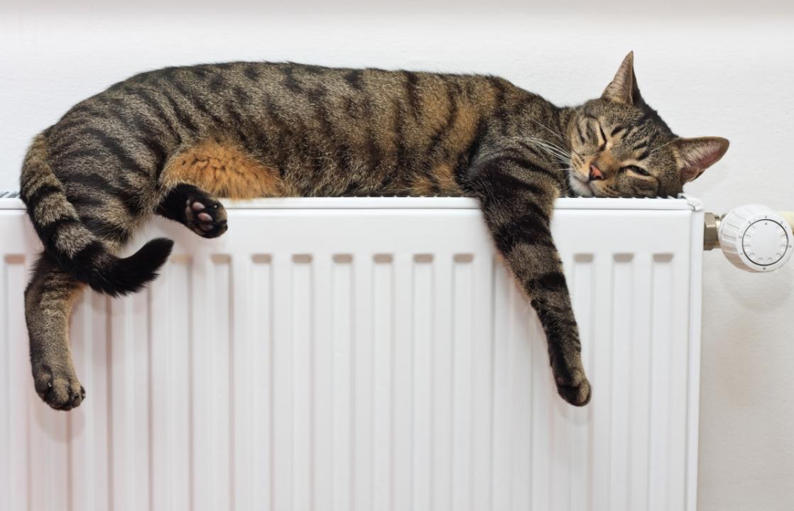 Власти Краснодара рассказали, когда у жителей появится отопление