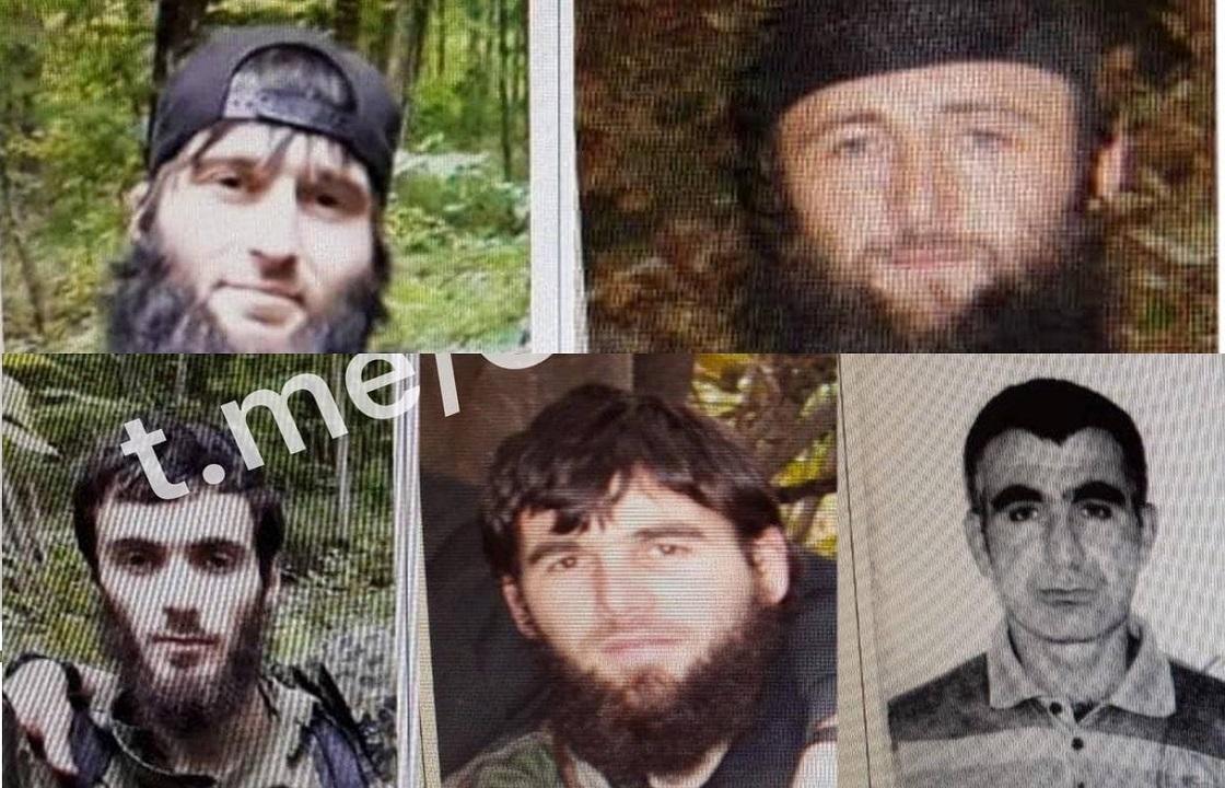 Кадыров опубликовал фото расстрелянных террористов амира Хамзата. 18+
