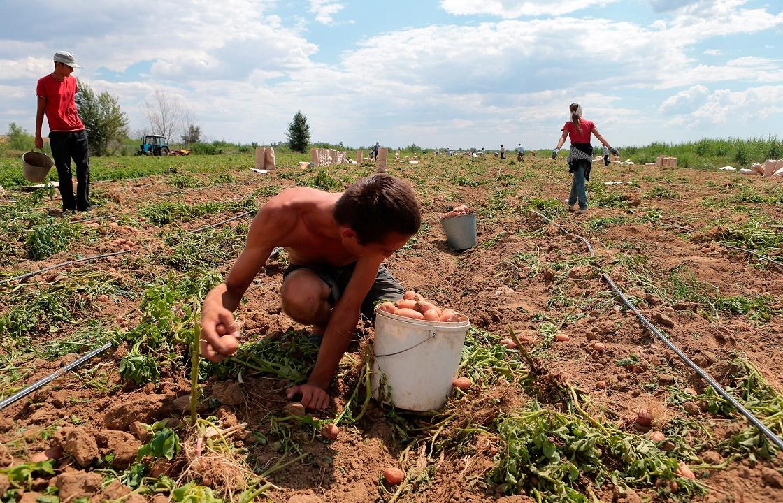 К лишению свободы приговорен придумавший рабство житель Калмыкии