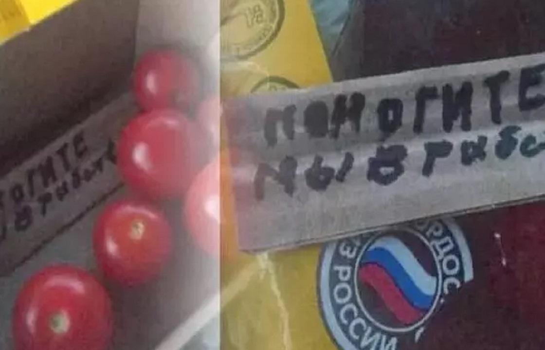 В помидорах из Ставрополья нашли записку рабов